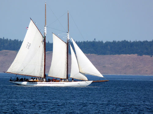 The Schooner Adventuress at the Port Townsend Wooden Boat Festival