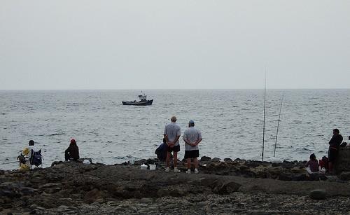 Sea Fishing in Washington State