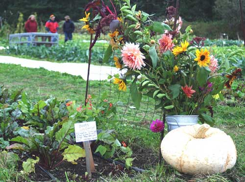 Volunteers run the Whidbey Island Garden Tours